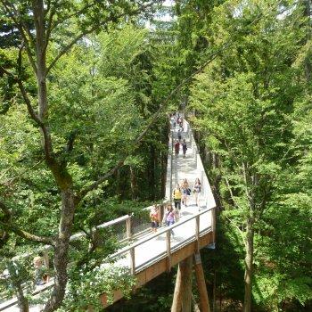 Národní park Bavorský les a Bayern Park