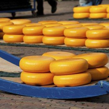 Holandsko – sýrová farma a Amsterdam